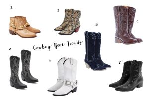 Andrea Steiner, fashion blogger from Lucerne in Switzerland write on her fashion blog Strawberries 'n' Champagne about the latest trend Cowboy Boots and have a list of Boots under 150 Euro.